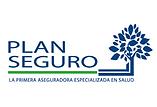 PLAN SEGURO.png
