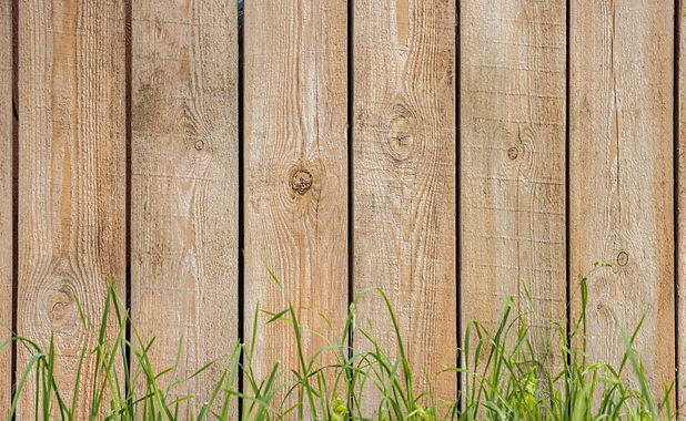 fence and grass.jpg