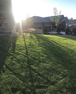 Sunset lawn photo.jpg