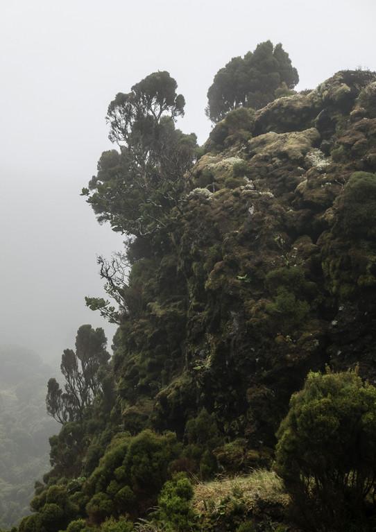 Terceira, Azorerna