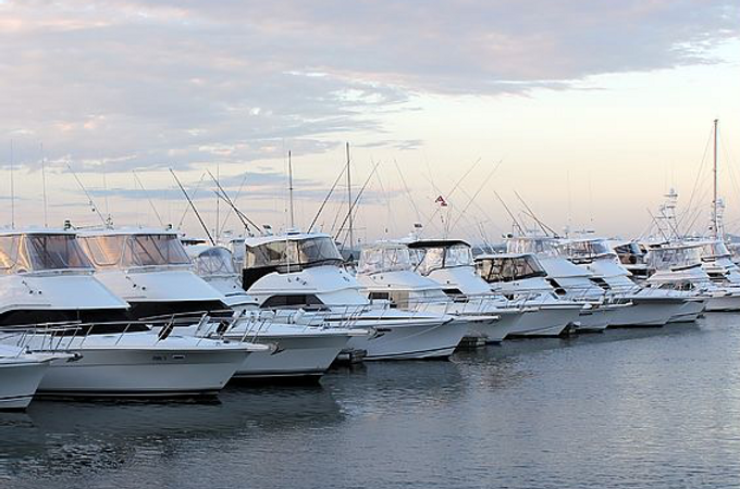 foundry cove marina.png