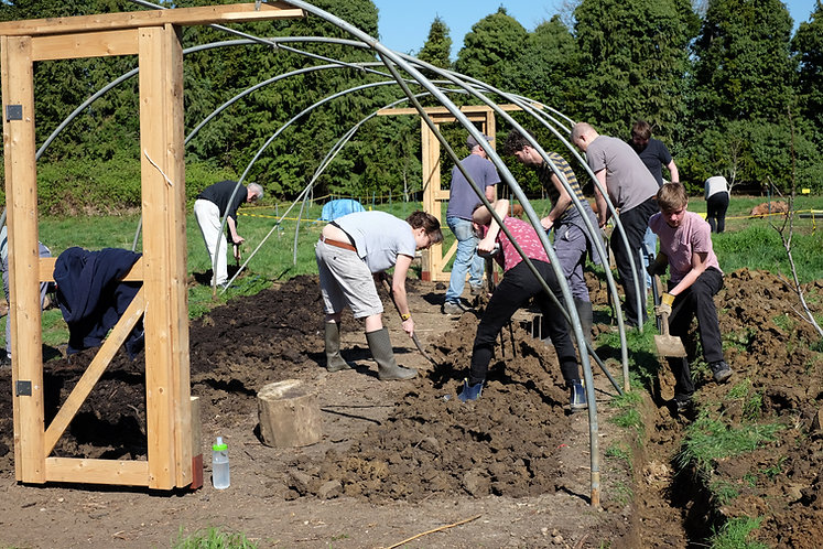 working on the poly tunnel.JPG