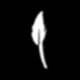 avatarweb.png