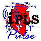 The Pulse logo.jpg