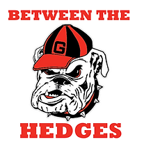 BETWEEN THE HEDGES.png