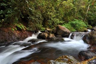 rio colorado near the hotsprings.jpg