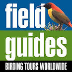 filed guides.jpeg