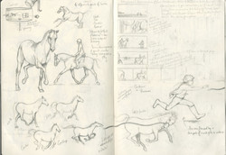 Horse gait