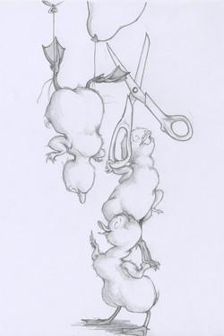 precarious poultry