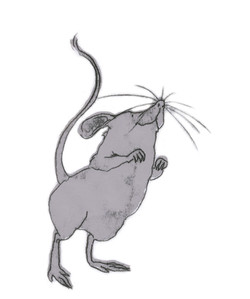 Monoprinted mouse sketch