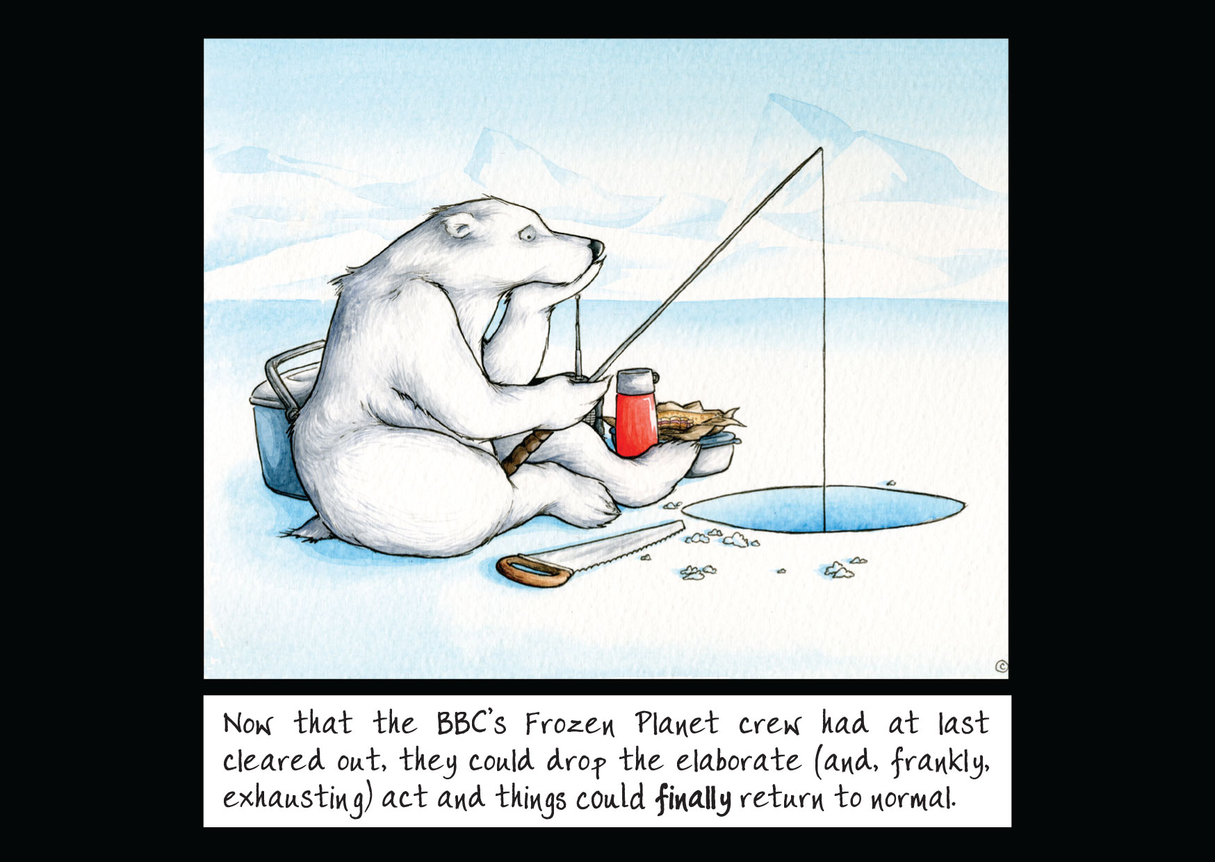 Polar Bear pursuits