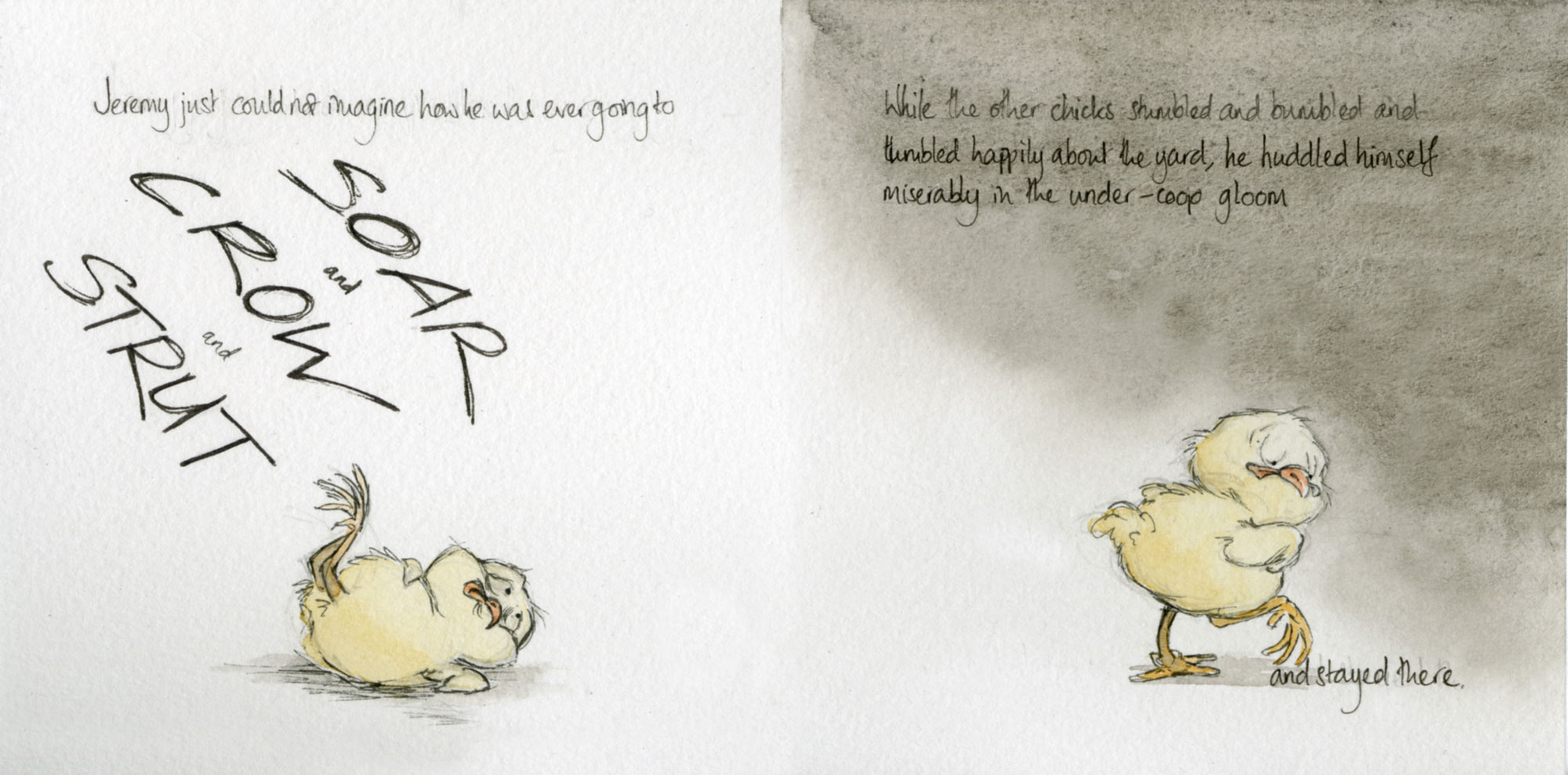 Chick picturebook rough