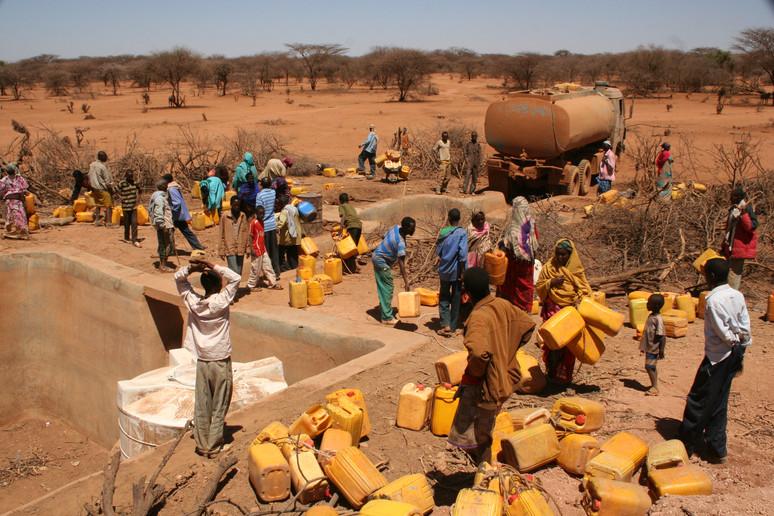La Crisis Alimentaria Global