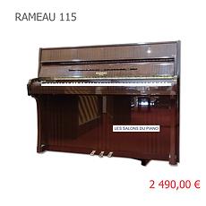 RAMEAU 115 VIGNETTE.png