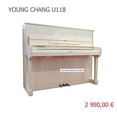 YOUNG CHANG U118 2990 VIGNETTE.png