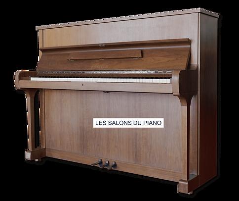 LES SALONS DU PIANO RÖNISCH 118