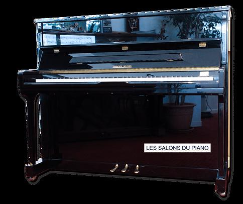 LES SALONS DU PIANO RIEGER KLOSS 123 Exclusive