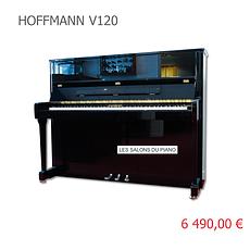 HOFFMANN V120 VIGNETTE.png