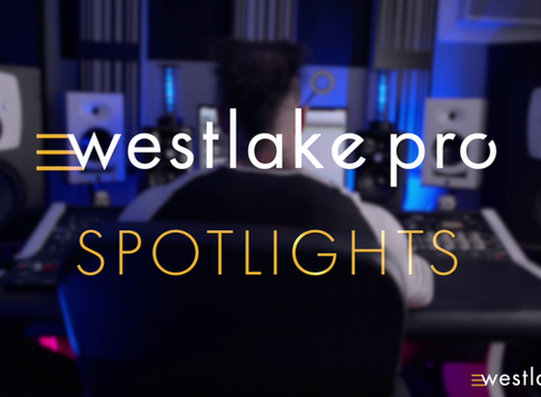 Westklake Pro Spotlight: David Gnozzi of MixBusTV