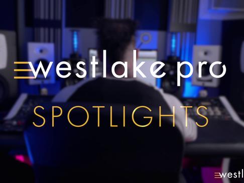 Westklake Pro Spotlight: David Gnozzi of MixBusTV