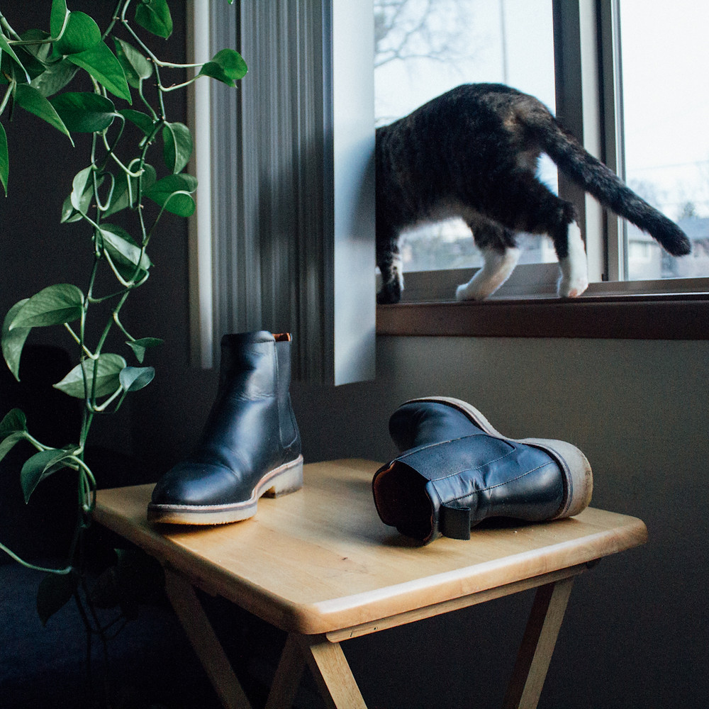 Everlane Brixton Boots Review