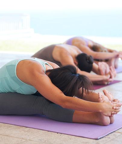 Yin & Yang Yoga in Offenbach & Frankfurt