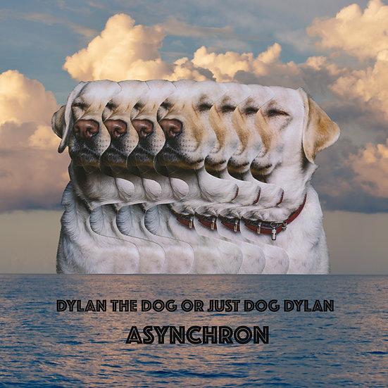 LP ASYNCHRON - PRETTY LIMITED EDITION