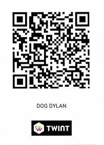 DOG DYLAN Twint GANZ.jpeg