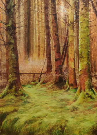 Farigaig Forest High;and