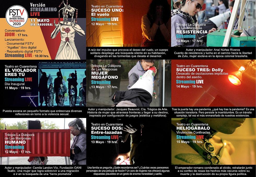 2 programa FSTV20.jpg