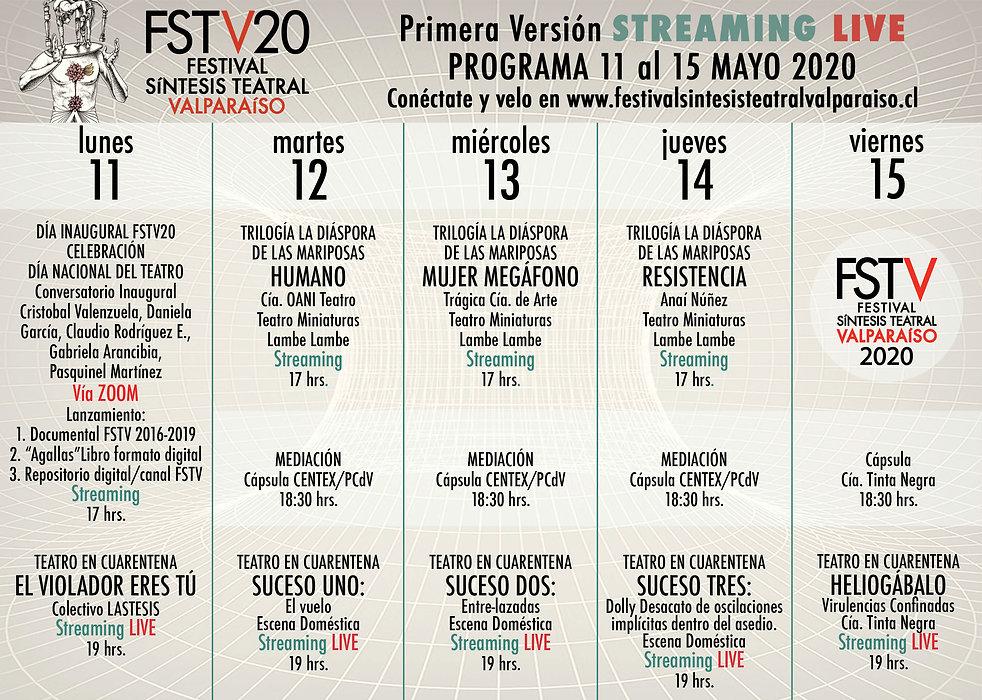 programa FSTV20.jpg