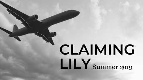 *NEW* Excerpt from Claiming Lily (MacKay International, #2)!