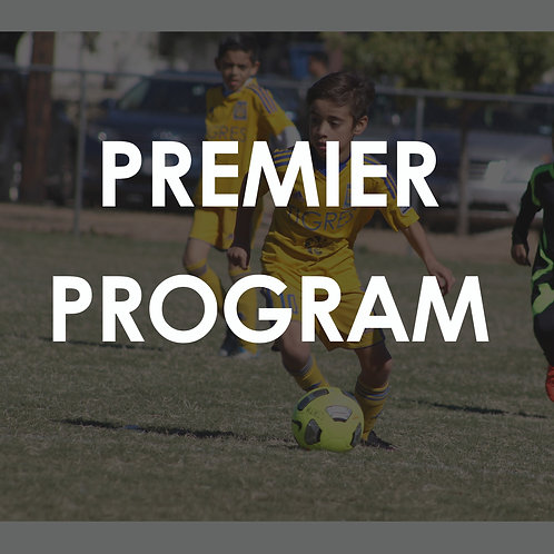 PREMIER PROGRAM / U11-U18 / WDDOA