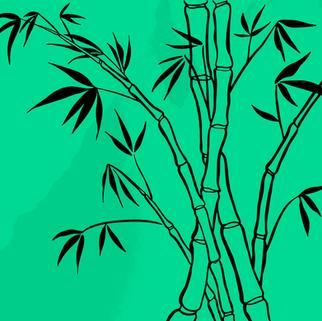 icon-bambu-instagram.png
