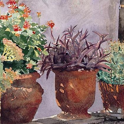 Three glorious pots