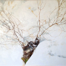 Branches in the snow.JPG