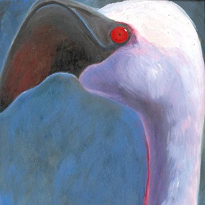 Flamingo no: 3