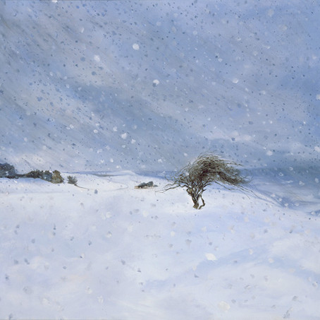 Twig Collector in the Snow.jpg