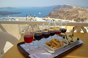 winery & oia tour.jpg