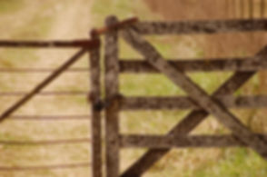 barn-blur-close-up-277669.jpg