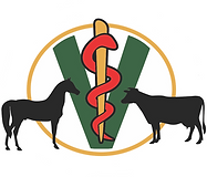 Pineview-Veterinary-Hospital-logo-NO WOR