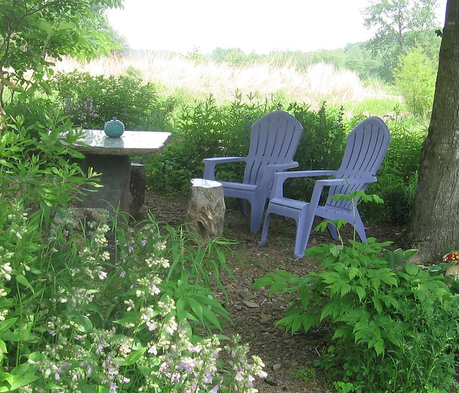 lawn chairs & table in misty woods