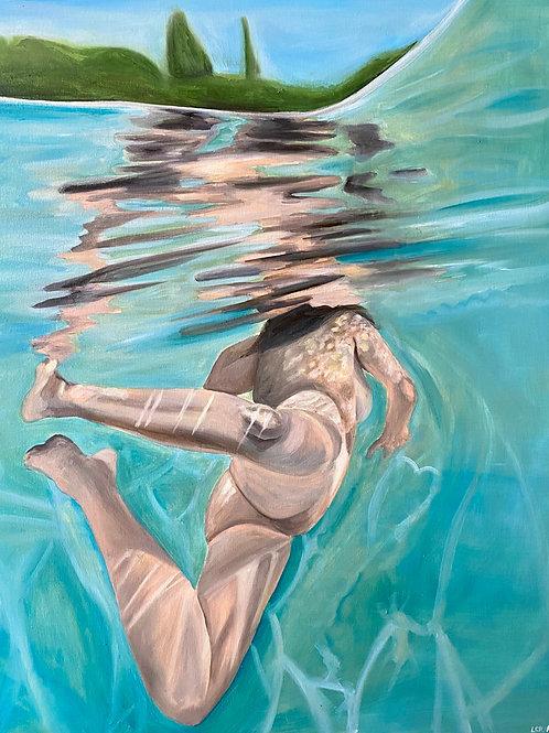 acquatica n. 5