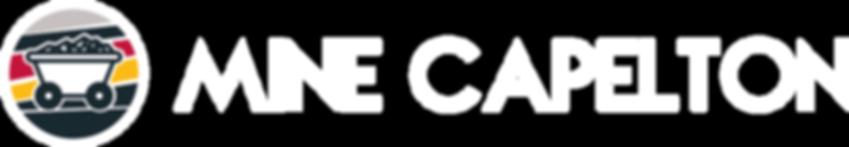 Logo_H_CMYK_Wh.png