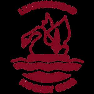 Leatherhead HC Icon.png