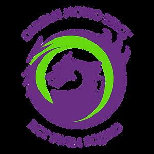 RCT Swim Squad Icon.png