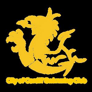 City Of Cardiff Swim Icon.png