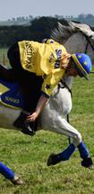 Mounted Games Association