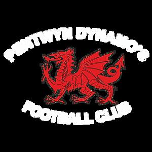 Pentwyn Dynamos Icon.png