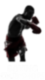 Boxing Club Shops Icon.png
